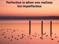 Perfection and imperfection